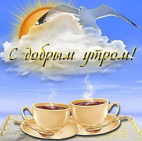 доброе утро картинки позитив